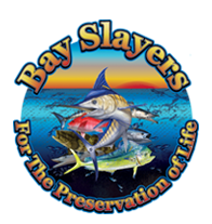 Bay Slayers